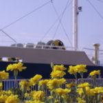 青い船とイエローの花