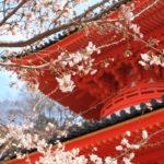 和歌山の紀三井寺