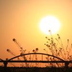 夕焼けと菜の花とパイプ橋