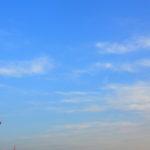 青い空とオレンジの標識